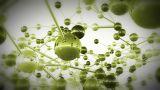 Complex Molecule Structure 12 stock footage