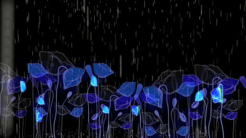 Rain451 Stock Video Footage