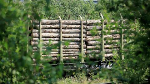 wood Stock Video Footage
