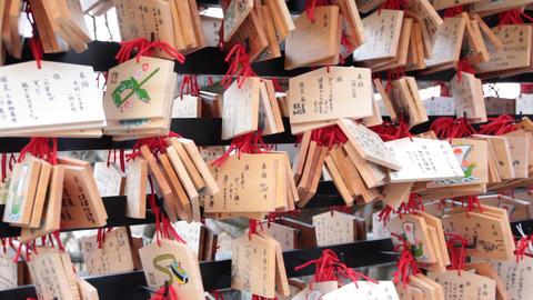日本の正月 Japan New Year ビデオ
