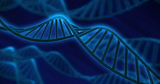 DNA Strand V2 3xclips 4k stock footage