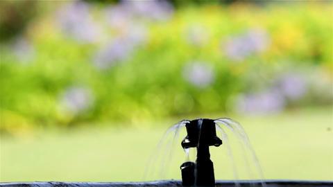 Plant Pot Irrigation Bubbler D Footage