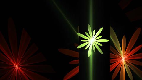 Spring, Floral Background, Red, Orange and Green Flowers Animation