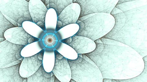 Blue flower, Spring, Floral Background Animation