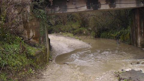 Creek along Road under Bridge 4 Live Action