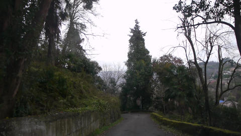 Mountain Uneven Road 1 Live Action