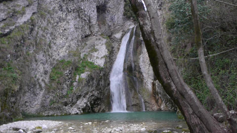 Mountain Waterfall and River in Forest Live Action