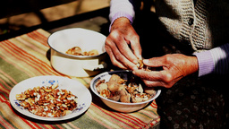 Unshelled And Peeling Walnuts stock footage