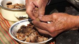 Unshelled And Peeling Walnuts stock footage