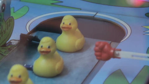 Ducks at a carnival game Footage