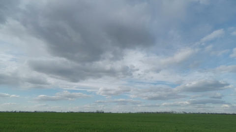 White Clouds Sweep Over the Green Field Footage