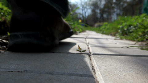 Walking on road Footage