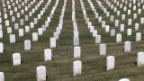 Military Cemetery Footage