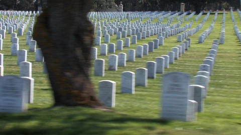 Military Cemetery Stock Video Footage