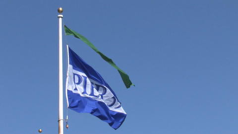 Pier 39 Flag Stock Video Footage