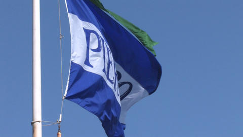 Pier39 Flag3 Stock Video Footage