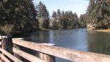 Senior Walking Along River Footage