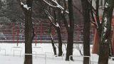 Snowy Suburb 02 Footage