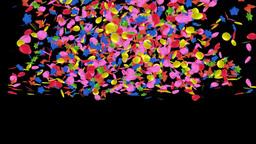 confetti fall Stock Video Footage