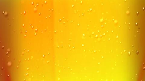 beer bubbles focus Stock Video Footage
