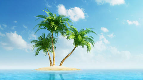 Growing palm trees on island at sea Stock Video Footage