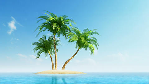 Growing palm trees on island at sea Animation