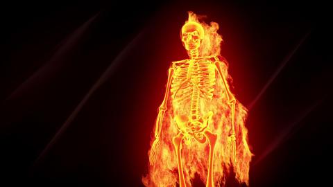 Fiery skeleton Stock Video Footage
