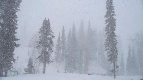 heavy snow Stock Video Footage