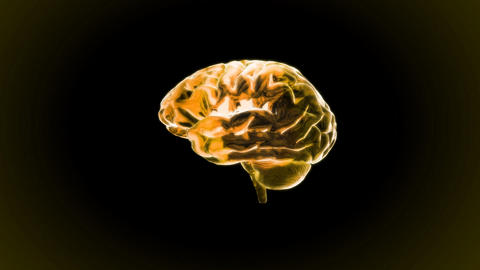 gold brain rotate Stock Video Footage