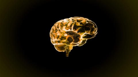 gold brain rotate Animation