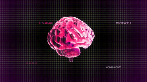 red brain rotate with timecode Stock Video Footage