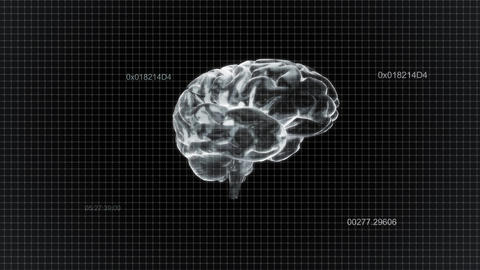 white brain rotate with timecode Animation