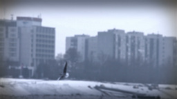 Seagulls over Icy River 08 city with sound Stock Video Footage