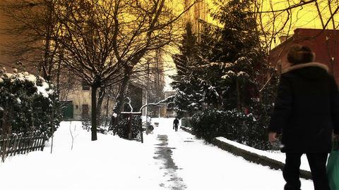 Snowy Suburb 17 walking stylized Stock Video Footage