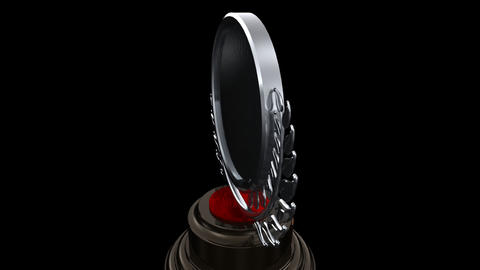 Medal Prize Trophy F HD Stock Video Footage