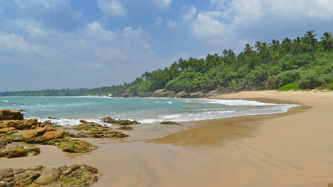 sea waves on tropical beach and coconut palms Footage