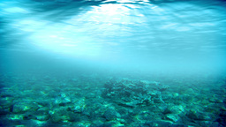 Underwater scene. Summer travel background. Check out my other underwater and se Animation
