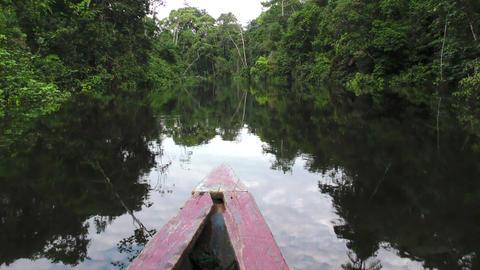 Canoe on Cuyabeno river Ecuador Footage