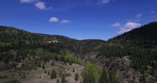 4K aerial nature, trees and blue sky Footage