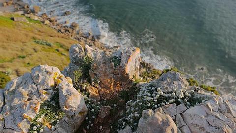 Beautiful Landscape Scene stock footage