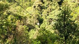 Woman on zipline tracking shot Footage