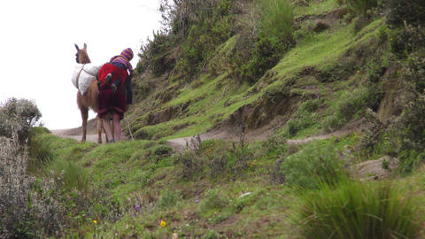 Peasant woman in Ecuadorian Andes Footage