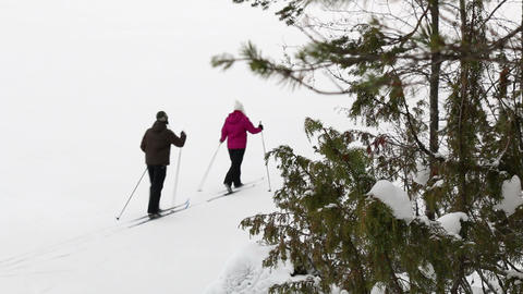 Recreative cross country skiers passing by at a snowy landscape with racking foc Footage