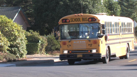 School Bus Stock Video Footage
