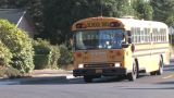 School Bus Footage