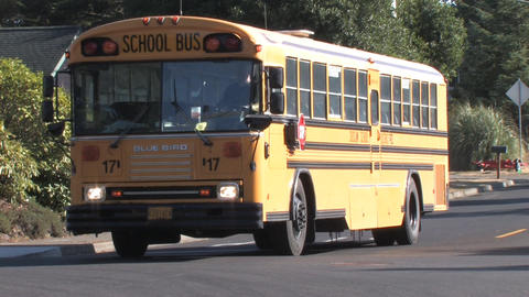 School Bus Stock Video Footage