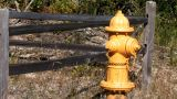Yellow Fire Hydrant Footage