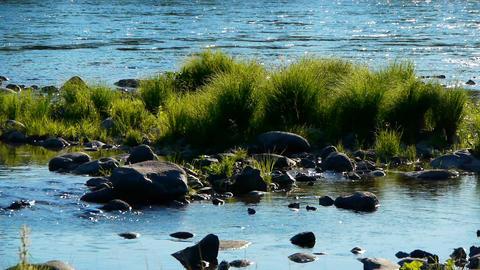 Teletskoe lake 8, Altai, Russia Stock Video Footage