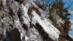 Tilt on thawing snow Stock Video Footage