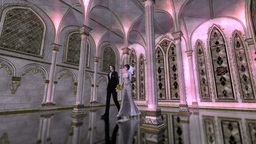 Wedding Stock Video Footage